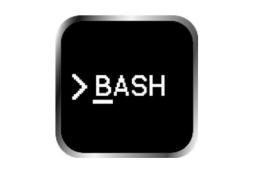 bash scp:未找到命令的解决教程分享