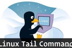 Linux如何使用tail命令教程分享-学派吧